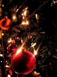 christmas-tree-1382373